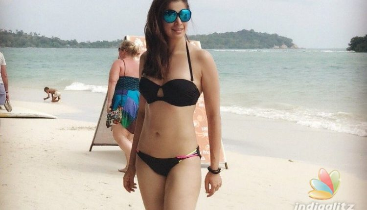 11 Hot and Bikini Body Photos of Raai Laxmi in 2018 (1)